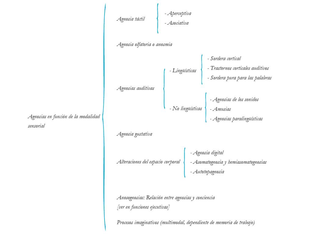 tipos de agnosias visuales según la modalidad sensorial