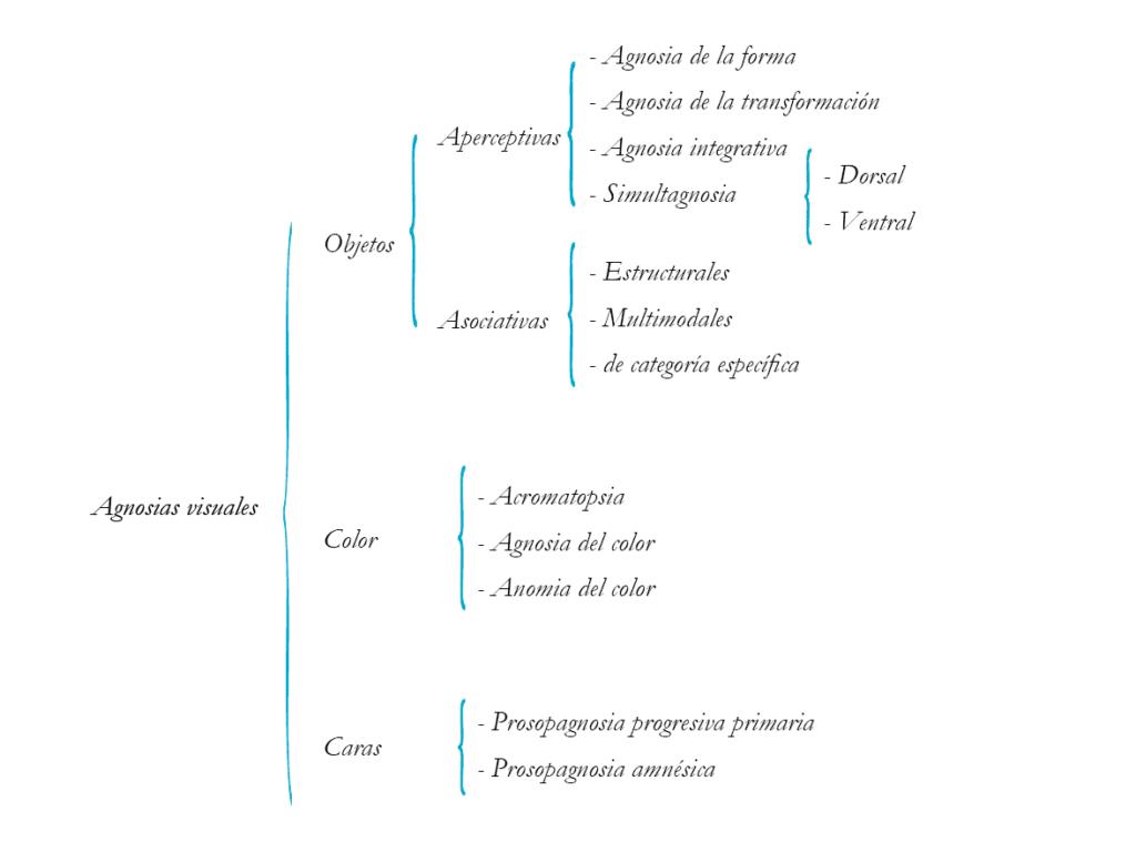 tipos de agnosias visuales