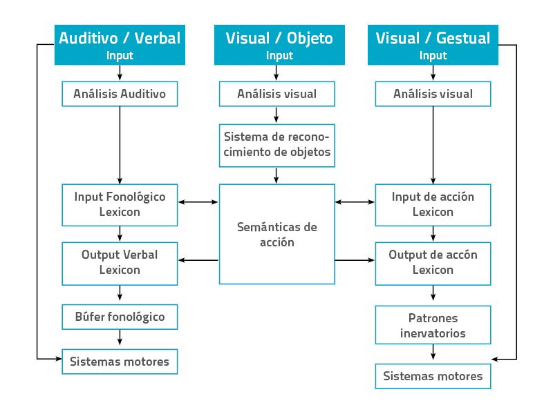esquema apraxias marco teorico neuronup