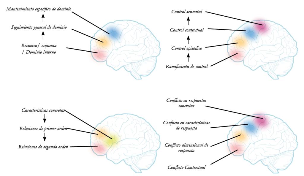 rehabilitacion de las funciones cognitivas