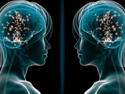 Sistema de neuronas espejo